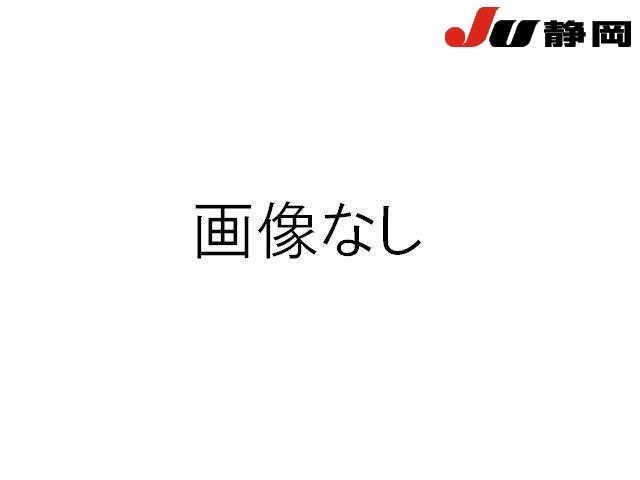 Import and buy SUZUKI XBEE 2020 from Japan to Nairobi, Kenya